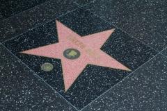 Tinker-Bell_Star_CA