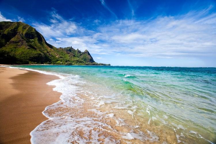 Hawaiian Discovery