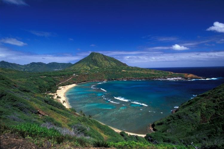 West Coast Aloha