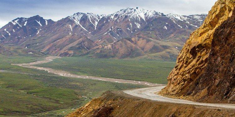 Denali National Park Roadway, Alaska (c) Yancy Caldwell