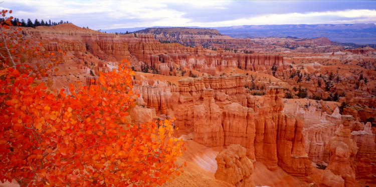 Sunset Point Bryce Canyon National Park (c) Tom Till